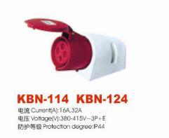 Industrial Plugs and Socket (KBN-114)