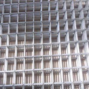 Electric Galvanized Welded Wire Mesh (DYWM961017)