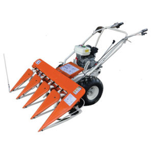 Soybean Reaper Wheat Rice Harvester Paddy Reaper Grain Harvester Wheat Paddy Harvester pictures & photos