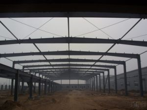New Tpye Steel Structure Plant