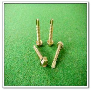 Hex Head Self Drilling Screw (DIN7504 (4.8*25))