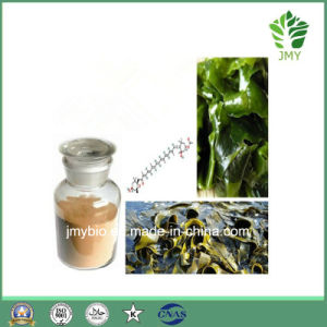 Fucoxanthin 5%~20% Natural Brown Algae Fucus Extract for Weight Loss pictures & photos