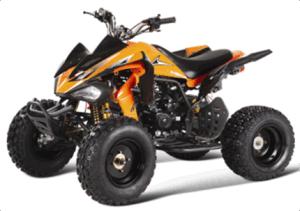 250CC ATV (GBTA64-250)