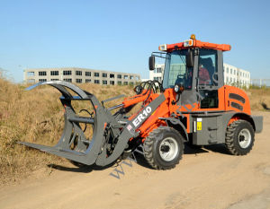 Everun Brand CE Approved 1.0 Ton Small Wheel Loader pictures & photos