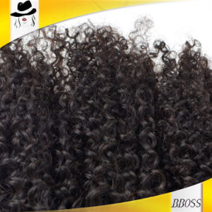 Good Market Brazilian Kinky Curly Remy Hair Extensions pictures & photos