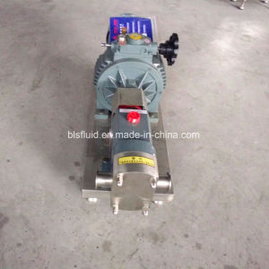 Factory Price Machine Gear Pump Price/Rotary Lobe Pump pictures & photos