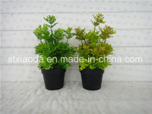 Artificial Plastic Potted Flower (XD15-367G)