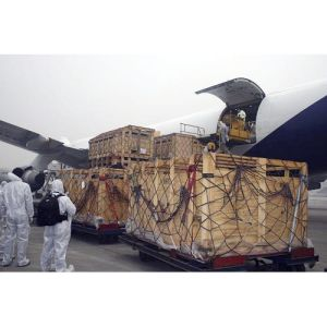 Shipping Forwarder/ Air and Sea Freight From China pictures & photos