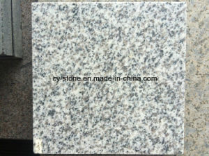 New Quarry/ Hubei G603 White Grey Granite Slab