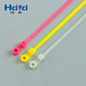 Nylon 66 Fixed Cable Tie pictures & photos