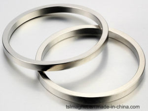 Sintered Ring Neodymium Magnets for Industry Used pictures & photos