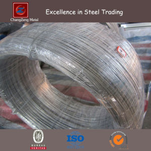 Hydrogen Stainless Steel Wire (CZ-W49) pictures & photos