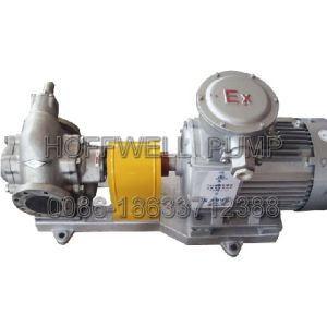 CE Approved KCB200 Stainless Steel Gear Oil Pump pictures & photos