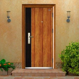 High Grade Plate Entrance Door pictures & photos
