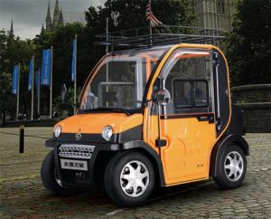 Electric Car with CE/DOT Certificate