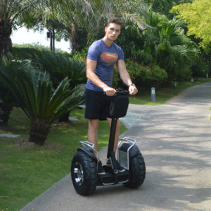 Self Balancing Vehicles with Machinery Directive, EU Standard Electric Scooter, Light Electric Chariot pictures & photos