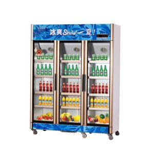 991L Vertical up Unit Opening Multi-Door Display Refrigerator pictures & photos