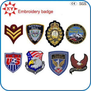 Exquisite Fine Detail Fashionable Patch Embroidery pictures & photos