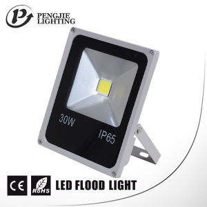 Low Price 30W LED Flood Light with CE (square) pictures & photos