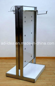 Fashionable Metal Display / Display for Store Presenting pictures & photos