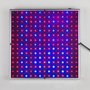 New Square 14W LED Grow Light Full Spectrum 225 Blue LED Lamp Light for Vegetables Lettuce pictures & photos