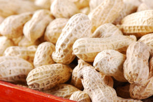 Fresh New Crop Peanuts in Shell pictures & photos