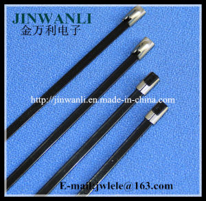 Ball Lock Type Stainless Steel Epoxy Full Coated Cable Ties pictures & photos
