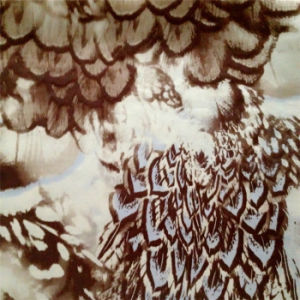 Printed Silk Ggt and Silk Satin in Feather Pattern