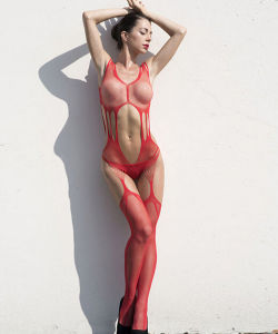 Sexy Red Transparent Stockings Lingerie or Legging pictures & photos