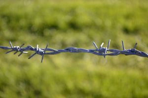 Anping High Quality Barbed Wire pictures & photos