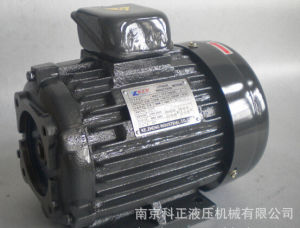 (China Manufacturer) Hydraulic Electric Motor-1/4HP-8p
