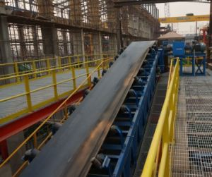 Fixed Belt/Band Conveyor Belt/Belting Material Suppliers pictures & photos