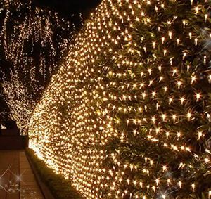 Christmas LED Net Light Tiny Lighted Star for Outdoor Decoration pictures & photos