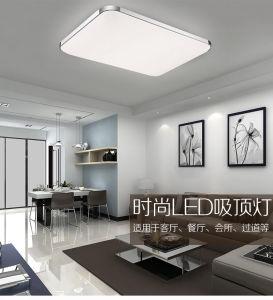 Aluminum Apple Design LED Ceiling Light pictures & photos