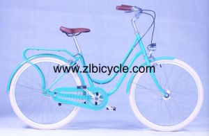Dutch City Bike pictures & photos