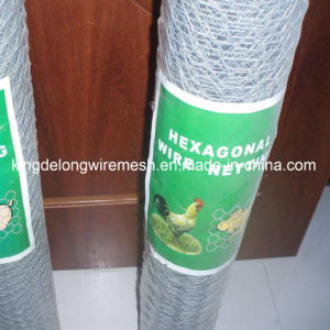 Chicken Wire Mesh/Poultry Wire Netting (kdl-139) pictures & photos
