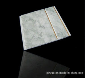 Top Quality China PVC Ceiling Panel Wall Panel Supplier (RN-100) pictures & photos
