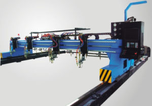 Gantry CNC Cutting Machine (CNC-3000/4000/6000/8000) pictures & photos