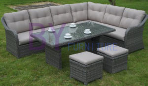 by-458 Hot Sale Fashion Garden Outdoor Wicker Rattan Sofa Set pictures & photos