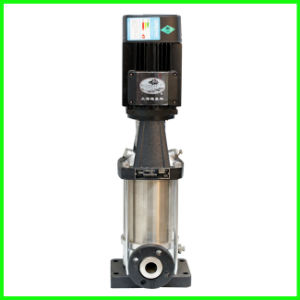 Vertical Pump with Shaft in a Vertical Position pictures & photos