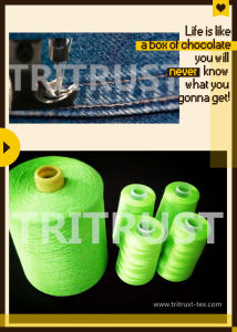 Spun Polyester Sewing Thread (20s/6) pictures & photos