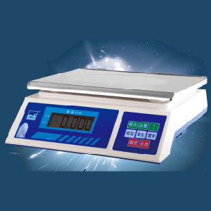 0.1g Digital Weighing Balance for Industry (DH~dh) pictures & photos