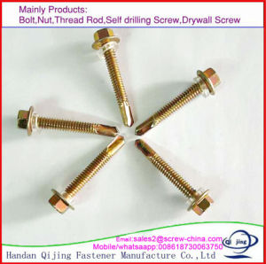 Hex Head Self-Drilling Screw with EPDM Washers pictures & photos