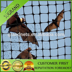 Cheap HDPE Agricultural Anti Bird Net Protecting Net pictures & photos