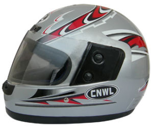 Full Face Helmet (WL-804)