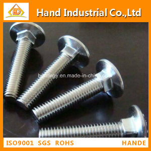"Stainless Steel Top Quality Ss 316 1/2"" Guardrail Bolt pictures & photos"