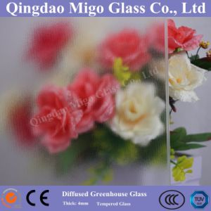 High Haze Tempered Diffused Greenhouse Glass with TUV/SGS Certificates pictures & photos