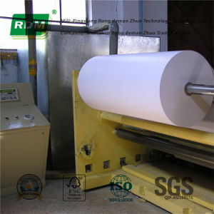 Carbonless Paper for Rotary or Web Offset Presses pictures & photos