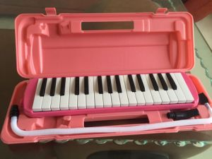 32 Key Melodica with ABS Case pictures & photos