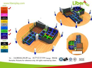 Hot Sale, High Quality, Professional Gymnastic Large Trampoline for Sale pictures & photos